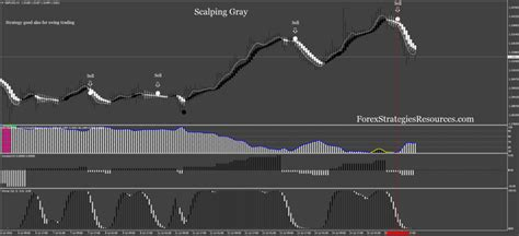 swing trading vs scalping scalping or swing trading forex