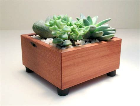 Succulent Planter Box Square Succulent Garden Centerpiece Succulent Planter Box