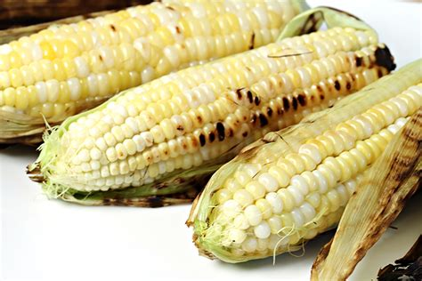 in their husks grilled corn on the cob food style