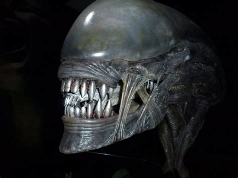 youtube space alien day party alien covenant prop