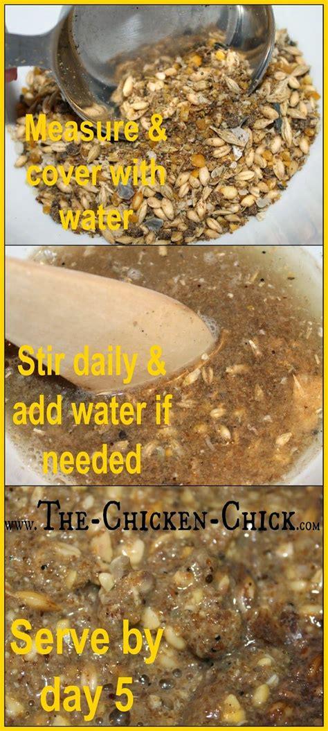 benefits of backyard chickens 10 ideas about chicken feed on pinterest backyard