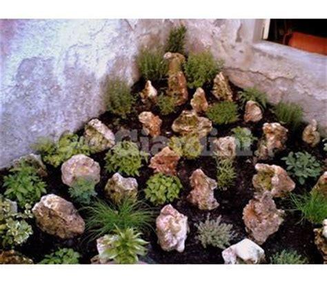 giardini rocciosi foto giardini rocciosi