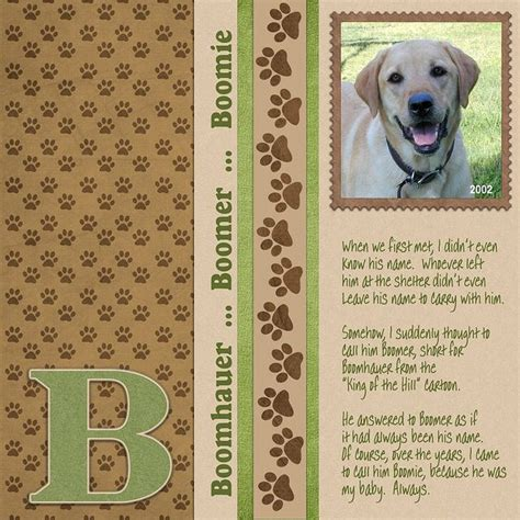 scrapbook layout ideas for pets 81 best dog and cat scrapbooking layouts images on