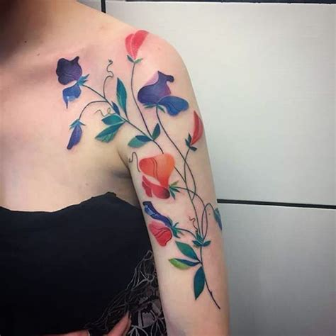 sweet pea tattoo best 25 sweet pea ideas on delicate