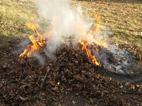 burn leaves in backyard burn leaves in backyard 28 images in ground fire pit plans fire pit design ideas