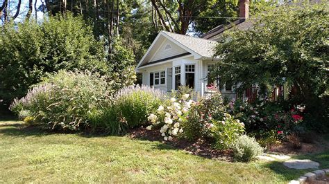 spring landscaping tips spring landscaping tips plant a forest lower your bills