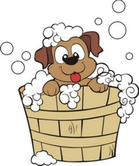 can you give a puppy a bath caring for your pet doctors