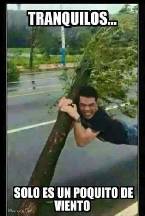imagenes graciosas viento memes de lluvia imagenes chistosas