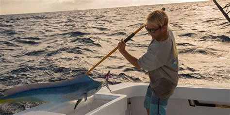 nc charter boat deep sea fishing cape hatteras deep sea fishing charters longer days