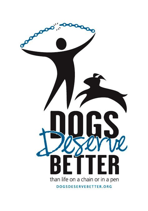 dogs deserve better charitychoice animal causes for charitable giving