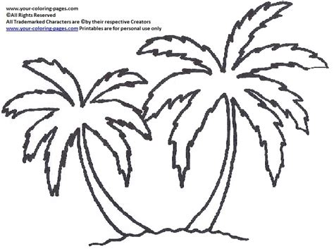 palm tree coloring template coloring pages