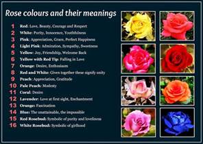 colors and their meaning daveswordsofwisdom beautiful colors and their