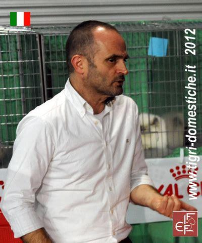 www mantovani it 3 e 4 gennaio 2015 mostra internazionale felina anfi