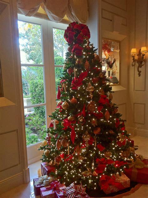 home decor gold coast christmas tree gold coast rainforest islands ferry