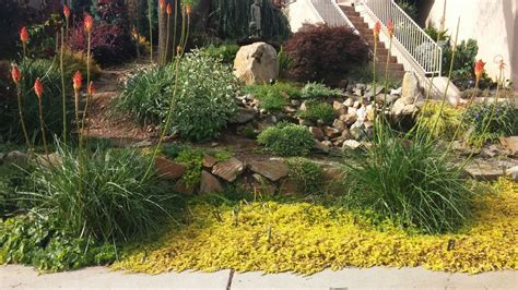 Garden Landscaping Newcastle Landscape Design Photos From Newcastle Ca Turiace