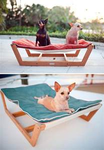 Pet Hammock 25 Best Ideas About Hammock On