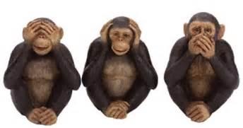 Monkey See Monkey Do 7 Monkey See Monkey Do