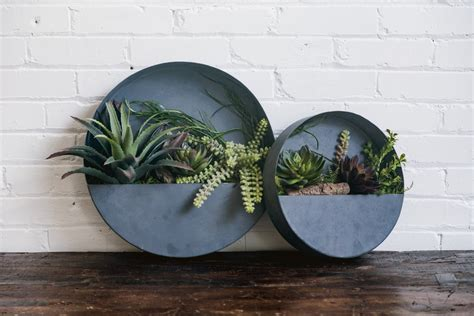Plastic Half Wall Planters by Half Moon Wall Planters Humble Dwellings