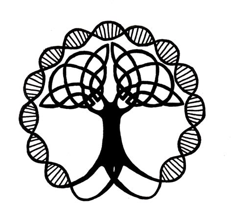 albero genealogico family tree on pinterest tree of