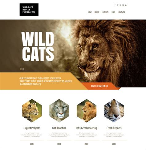 themes bootstrap pets 16 animal pets bootstrap themes templates free