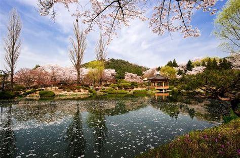 wallpaper alam korea kumpulan gambar pemandangan indah di korea tempat wisata