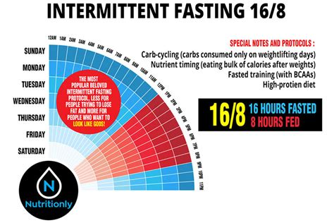 intermittent fasting improved size and strength with 16 8 intermittent fasting