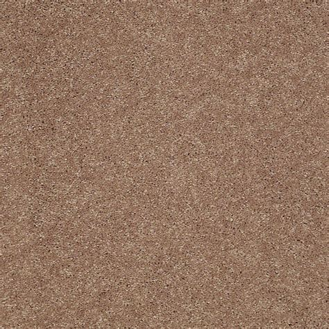home decorators collection carpet sle wholehearted ii color vanilla frost twist 8 in x 8 home decorators collection carpet sle brave soul ii