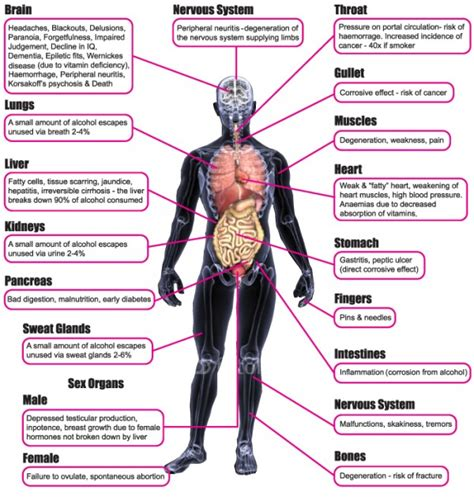 How Many Drinks Detoxed Person Before Physical Dependence by Effects Of On The