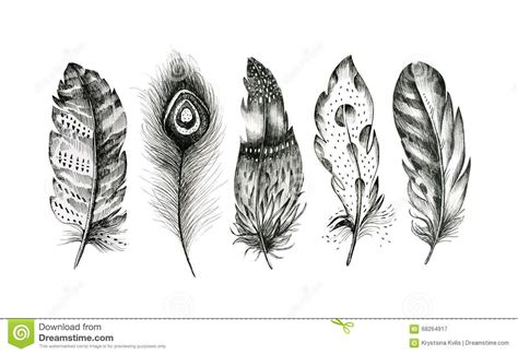 set of hand drawn feathers on white background boho