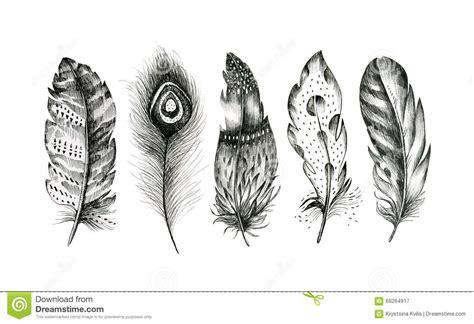 set of hand drawn feathers on white background boho