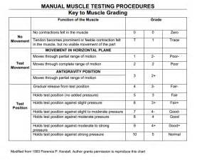 Manual muscle testing grading chart florence kendall