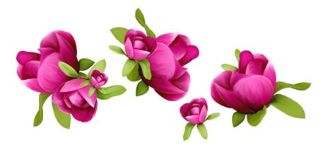 Home Flower by Free Spring Flower Clipart 66