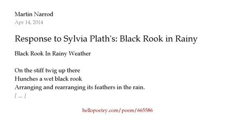 themes in black rook in rainy weather response to sylvia plath s black rook in rainy weather by
