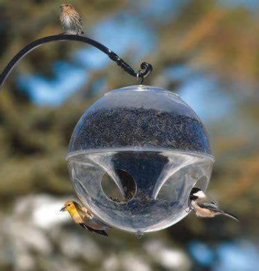 bird feeders pigeon proof bird feeders