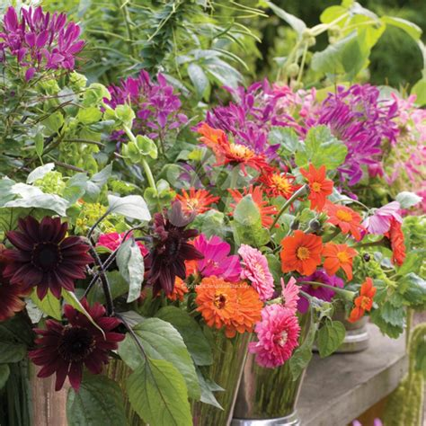 cutting garden flowers the cutting garden course with