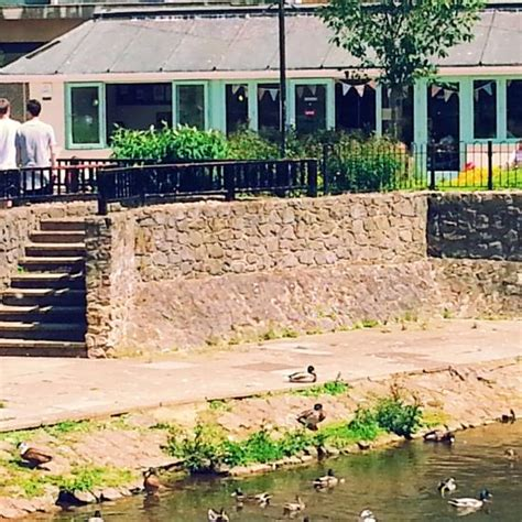 restaurants the shed in taunton deane with cuisine