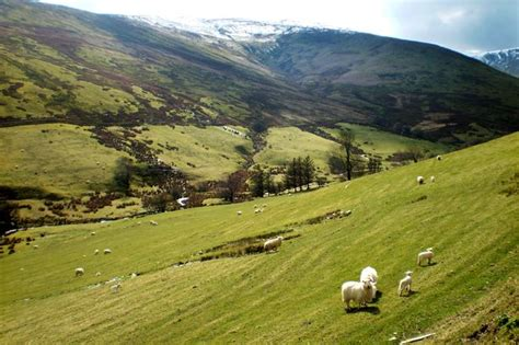 Landscape Expression Definition Meaning What Is A Quot Moorland Farmer Quot Language