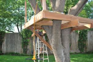 How To Build A Zipline In Your Backyard How To Build A Treehouse Treehouse Tree Houses And