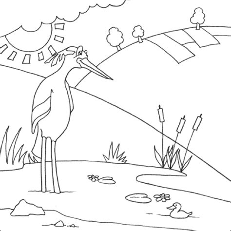 great blue heron coloring pages