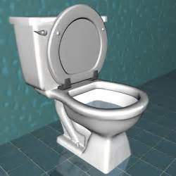 toilette flush wyoming reserch category middle age