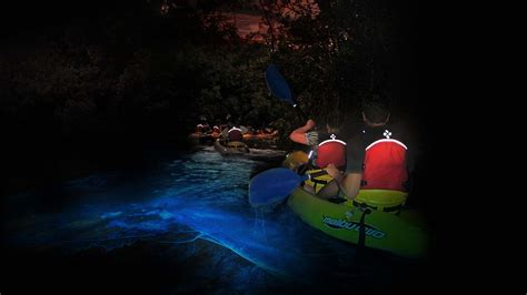 puerto rico to florida by boat bio bay kayaking beach snorkel tours trips fajardo