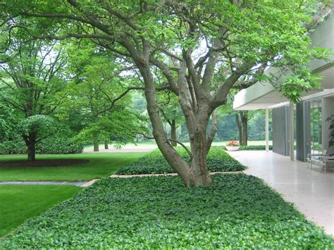 dan kiley a great yet little known modernist gardens eero saarinen and daniel o connell