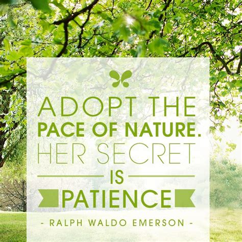 themes of the essay nature by emerson nature essays ralph waldo emerson