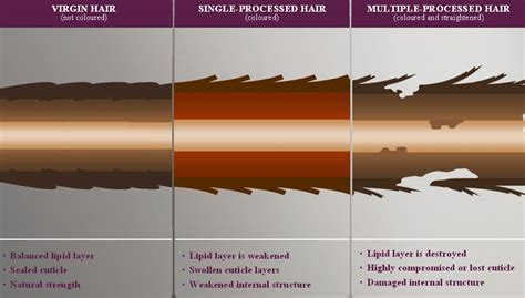 hair dye that does the least daage to hait hair damage mixed beauty