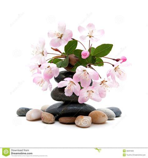 a fiori spa pietre stazione termale di zen con i fiori fotografia