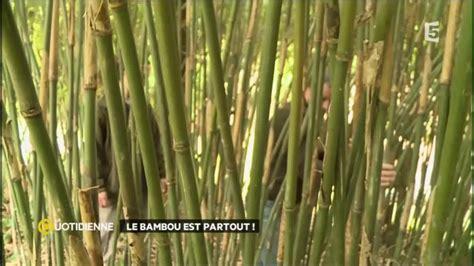Fabriquer Des Objets En Bambou by Construire Des Objets En Bambou Fashion Designs