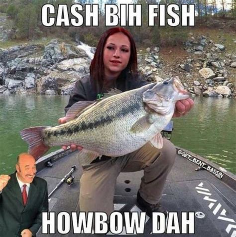 Fishing Memes - 17 best ideas about funny fishing memes on pinterest