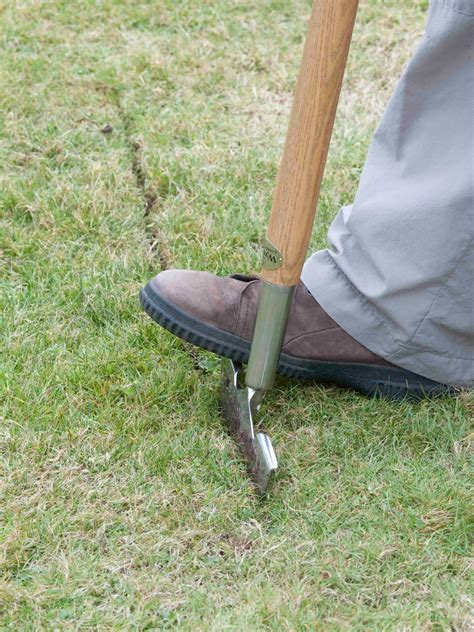 how to level backyard lawn how to create a level lawn hgtv