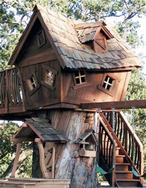 top 10 tree houses design ideas we love homedit stunning crooked tree house plans pictures ideas house