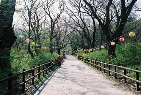 wallpaper hp yg indah tempat tempat indah di korea our world